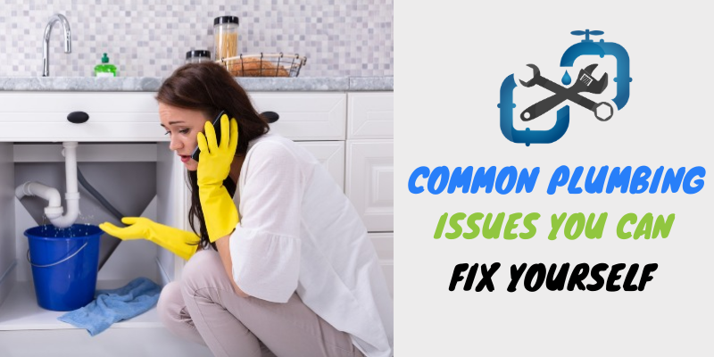Common Plumbing Issues You Can Fix Yourself